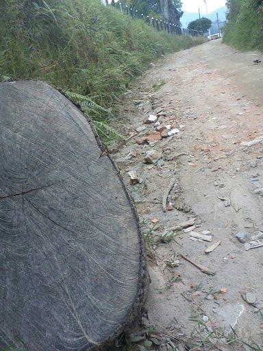 Camino de Piedra Salento Quindio